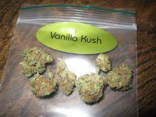 Grade A+++ marijuana Strains for sale @262-221-8014