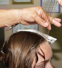 Professional Natural Head Lice Removal Image eClassifieds4u 4