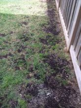 Organic Green Lawncare Services- Spring Clean-ups 2016 Image eClassifieds4u 1
