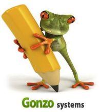 Website Design Services Florida - Gonzosystems