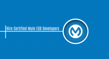 Hire Certified Mule ESB Developers & Specialists