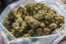 Quality medical marijuana for sale//s.m736275.4@gmail.com