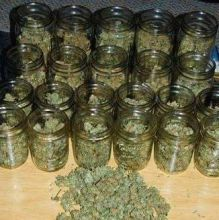 TOP SHELF MEDICATED MARIJUANA AND OIL FOR SALE AT DISCOUNT CALL OR TEXT (909)4735523