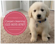 Carpet Cleaning in Portsmouth Image eClassifieds4U