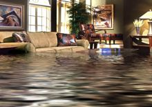 Easy Structure Restoration of water damage carpet Brisbane