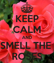 Smell the Roses CLEANING services