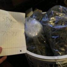 top quality medical marijuana at low prices 5594927571
