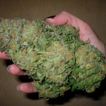 Buy good quality Cocaine or any other drugs online (drmichaelpeters1@gmail.com) Image eClassifieds4u 1