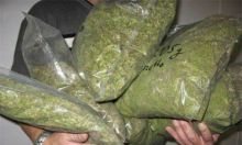 Buy good quality Cocaine or any other drugs online (drmichaelpeters1@gmail.com) Image eClassifieds4u 2