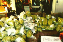 TOP QUALITY BUDS AVAILABLE 916) 304-5803
